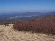 Gregory Bald view of Cades Cove