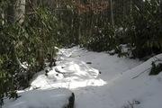 Ramsey Cascade 005