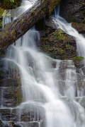 Tremont Roadside Falls