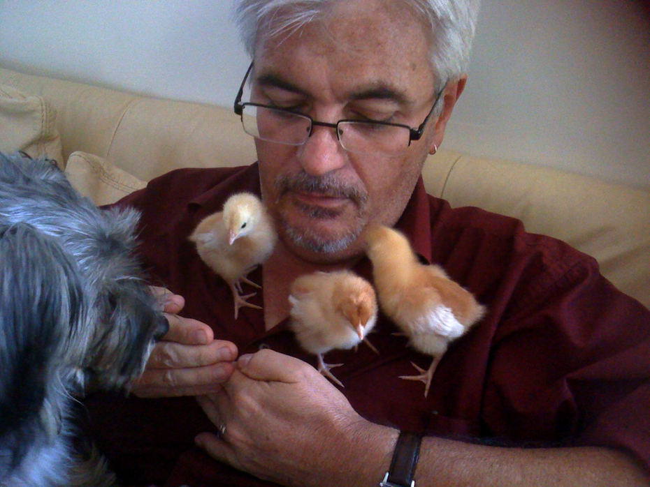 Bobbie and I pick up all the chicks