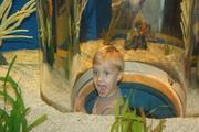 At Ripley's Aquarium