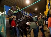 Heavy Horse Barn