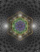 Cosmic Life