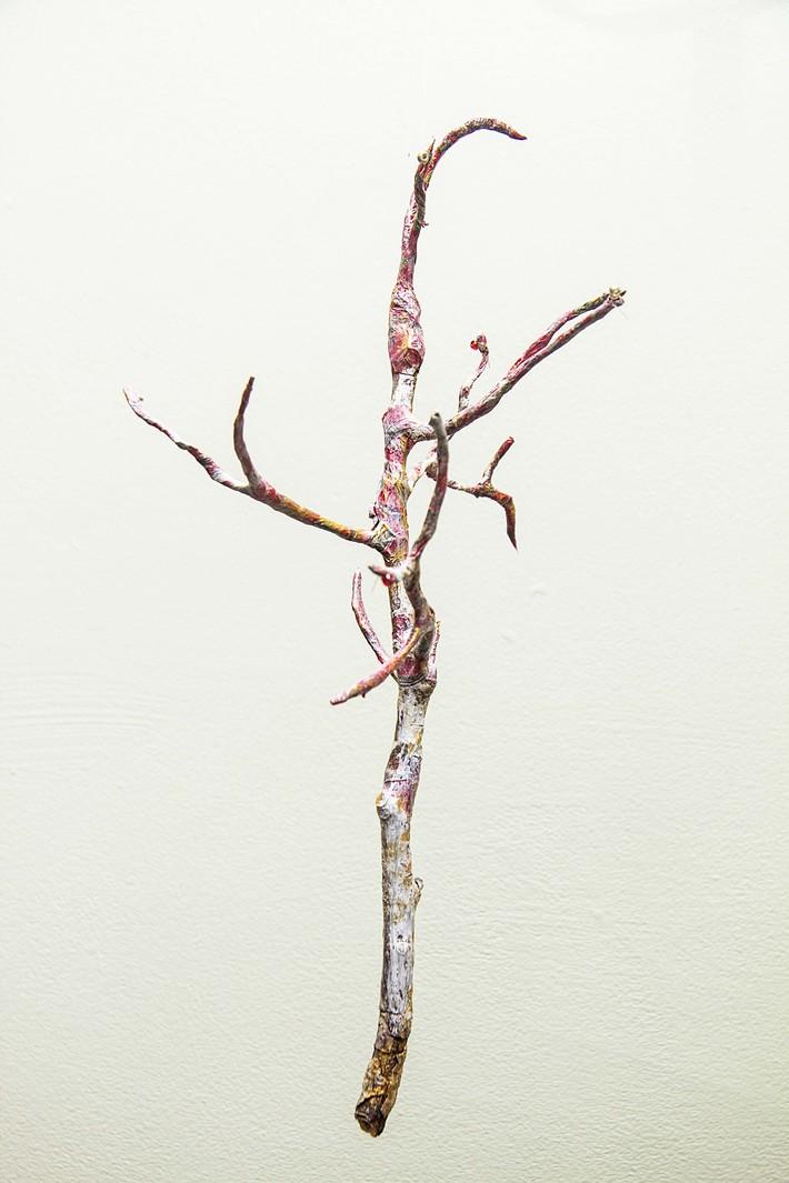 seasons. tree