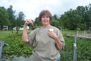 Linda catch of the day