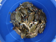 Another Low Country Crab Boil Tomorrow....