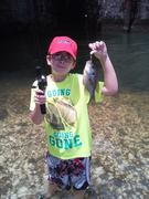 Coosa Valley/Etowah bream