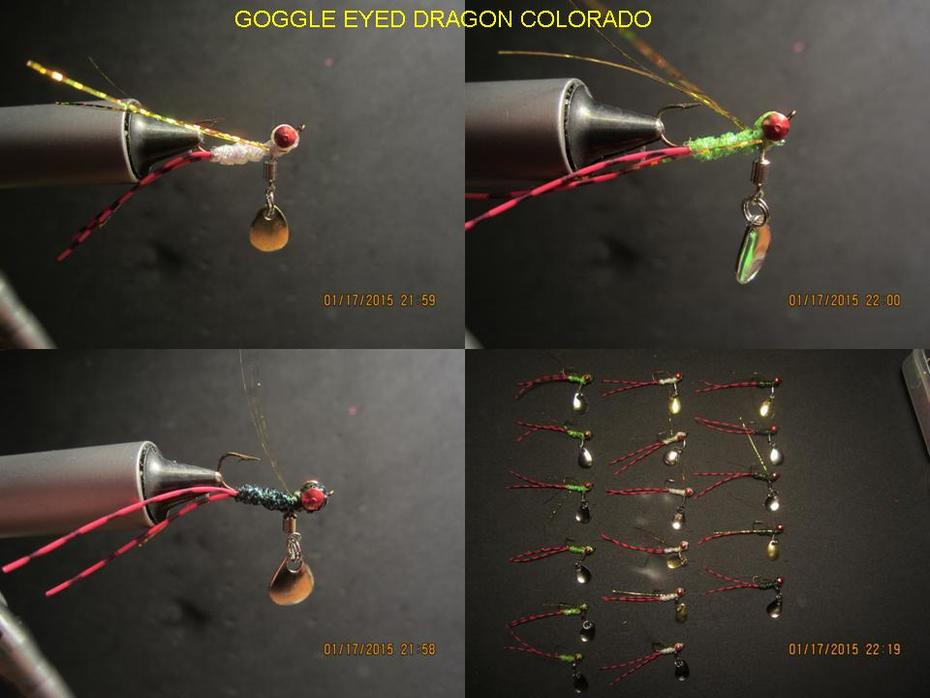 Goggle eyed dragon colorado (Ice Flies)