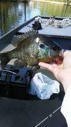 4/21/19 Fishing Trip
