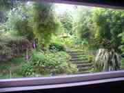 bedroom window view