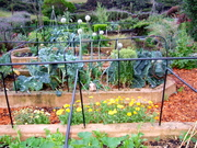 Garden vantage point