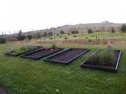 Veggie garden edging..finally finished.