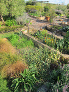 gardenday112012