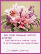 REGALO ESPERANZAS4 IRIS