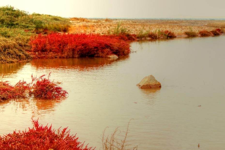 αλλαγή στα ............ χρώματα των καιρών