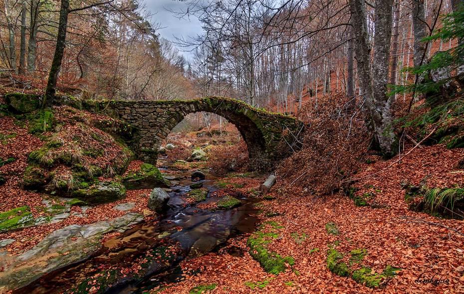 Γέφυρα Λεωνίδα