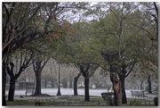 βροχερή Κέρκυρα ( 17)