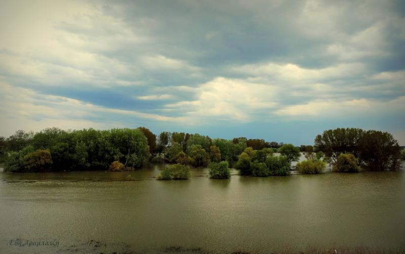 Στο ποτάμι.