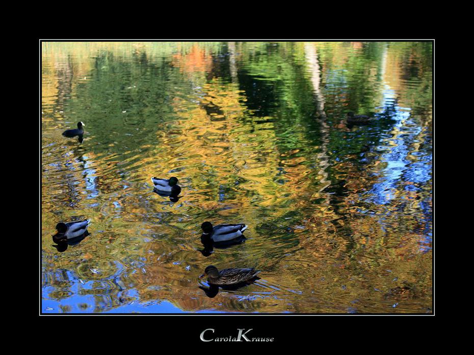 Χρώματα στο Πάρκο ΙΙ