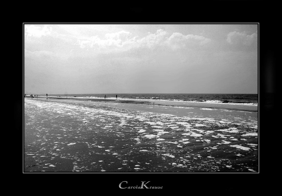 Dutch Beach near Den Haag
