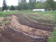 inspiration farm 055