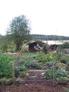 Shambala Farm and Edible Perennial Nursery