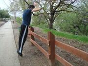 Fence jump 3