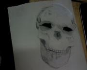 skull pic