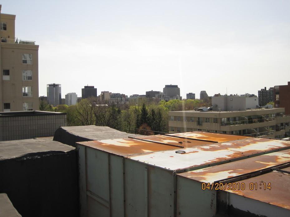 Rooftop Garden in Toronto