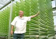 Biofuel From Algae Oil