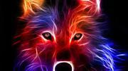 energy animal portrait