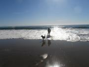 milly beach