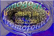 04 missing life loop (code)