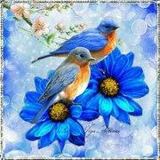 fondo flores y pajaros