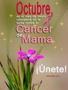 Octubre-solidaridad con el Cáncer de Mama