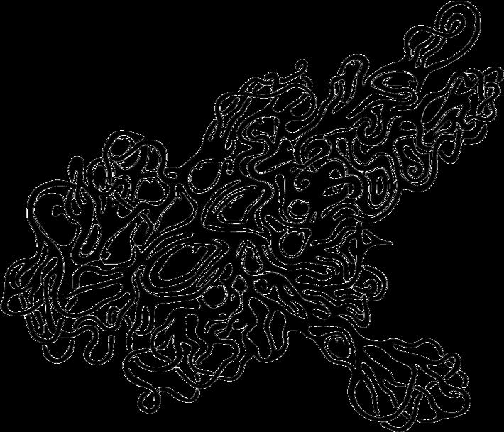 octopeyelargecleared