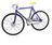 JP Neighbors Cycling