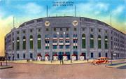 Yankee Fans!