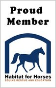 Habitat for Horses: Equine Protection Organization