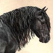 Equine Arts