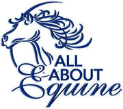 All About Equine