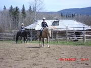 Gweek Riding Center