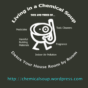 Living in a Chemical Soup Indiana: Detox Your Home Room by Room