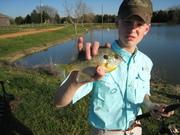 live bait fisherman