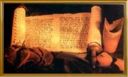 'Parchments & Scrolls