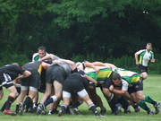 Hudson Valley Rebels Rugby Club - Men's & Women's