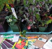New Zealand Seed and Plant Exchange