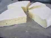 Making Cheese