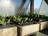 Forum for Community Gard…