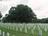 Arkansasgravestones Gen …